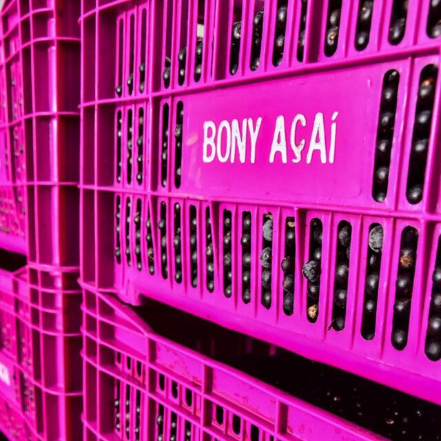 site-bony-açaí-03